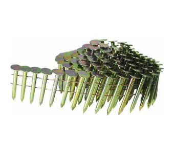 """Smooth Shank Electrogalvanized Coil Roofing Nails 1 3/4"""""""
